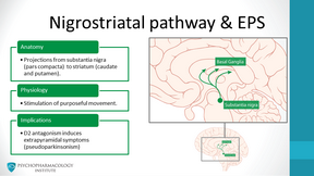 The Four Dopamine Pathways Relevant to Antipsychotics